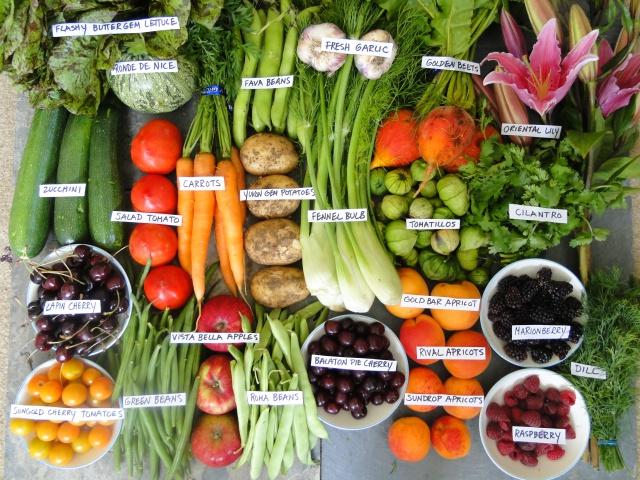 4 Sayur dan Buah yang Wajib Dimakan untuk Kulit Bersih
