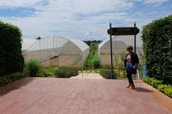Ozone Organic Farm